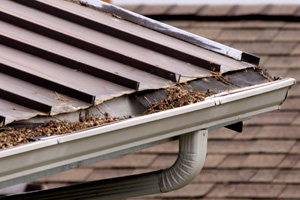 Gutters, Some reasons for cleaning the gutters