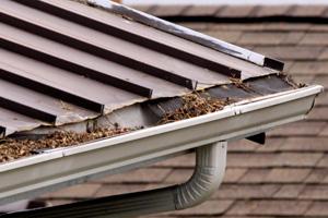 Einige gründe für die reinigung der dachrinnen