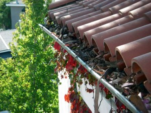 Gutters, The importance of cleaning the gutters