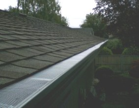 The gutter guard functionality