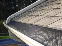 Should I install gutter guards or no?
