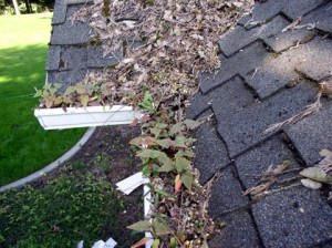 Gutter guards and their estimated costs