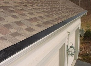 The truth about the raindrop gutter guards