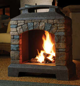 wood burning or propane gas fireplace insert