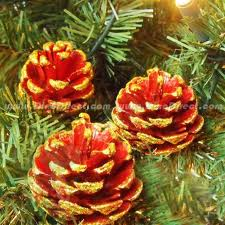 Eco-friendly Christmas ornaments