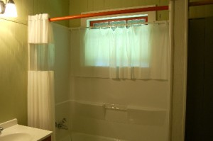 Blinds for Shower Window