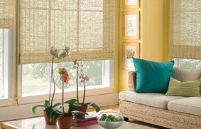 Learn to choose your window blinds